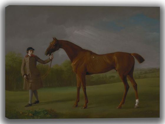 Stubbs, George: Lustre, Held by a Groom. Fine Art Canvas. Sizes: A4/A3/A2/A1 (004117)
